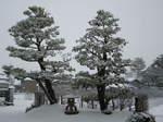 雪が積もった(^_^)