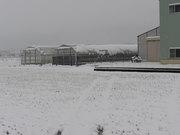 雪が積もりました(^o^)