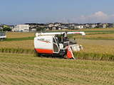 飼料米の収穫